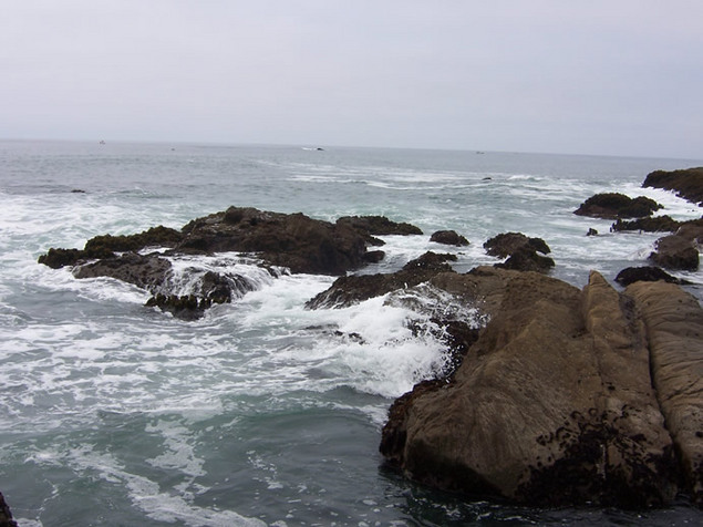 Product picture Pacific Tidepool Sounds for Relaxation and Meditation MP3